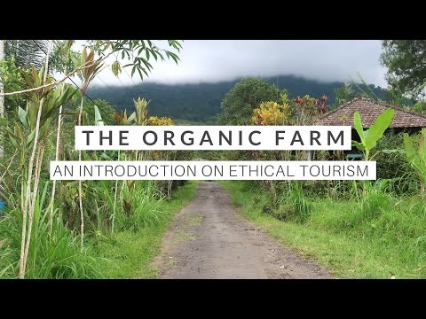 The Organic Farm | An Introduction On Ethical Tourism