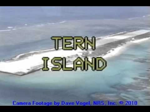 Aerial View of Tern Island