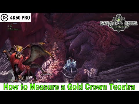 Monster Hunter: World - How to Measure a Gold Crown Teostra (Elder Recess)