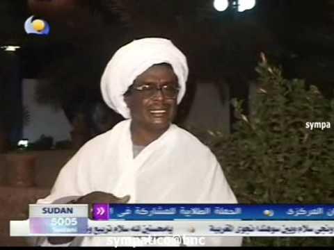 الشاعر محمد الحسن حميد - النخلة