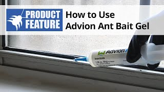 How to Use Advion Ant Bait Gel