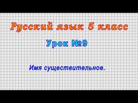 Видеоурок русский язык 5 класс имя существительное