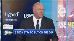Buy these 3 tech ETFs on the dip, says Kevin O'Leary