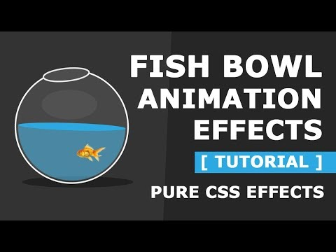 Pure CSS Fish Bowl Animation Effects - Latest Html And CSS Animation Effects Tutorial