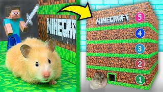 Hamsters in a 5 - Level Minecraft Maze
