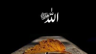 Asma Ul Husna 99 Nama Allah ( Beserta Artinya )
