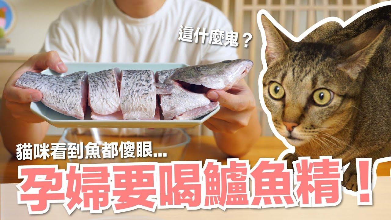 【好味小姐】孕婦要喝鱸魚精!貓咪看到魚都傻眼...|貓副食|貓鮮食廚房EP198
