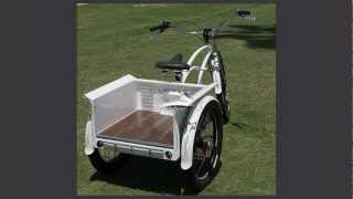 "Custom Beach Cruiser Trike, The ""Transformer"""