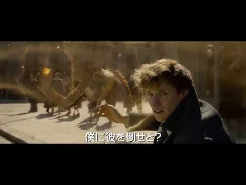 ベビーニフラー登場『ファンタスティック・ビーストと黒い魔法使いの誕生』本予告編