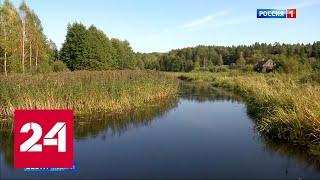 Как живет белорусский полуостров, окруженный территорией России - Россия 24