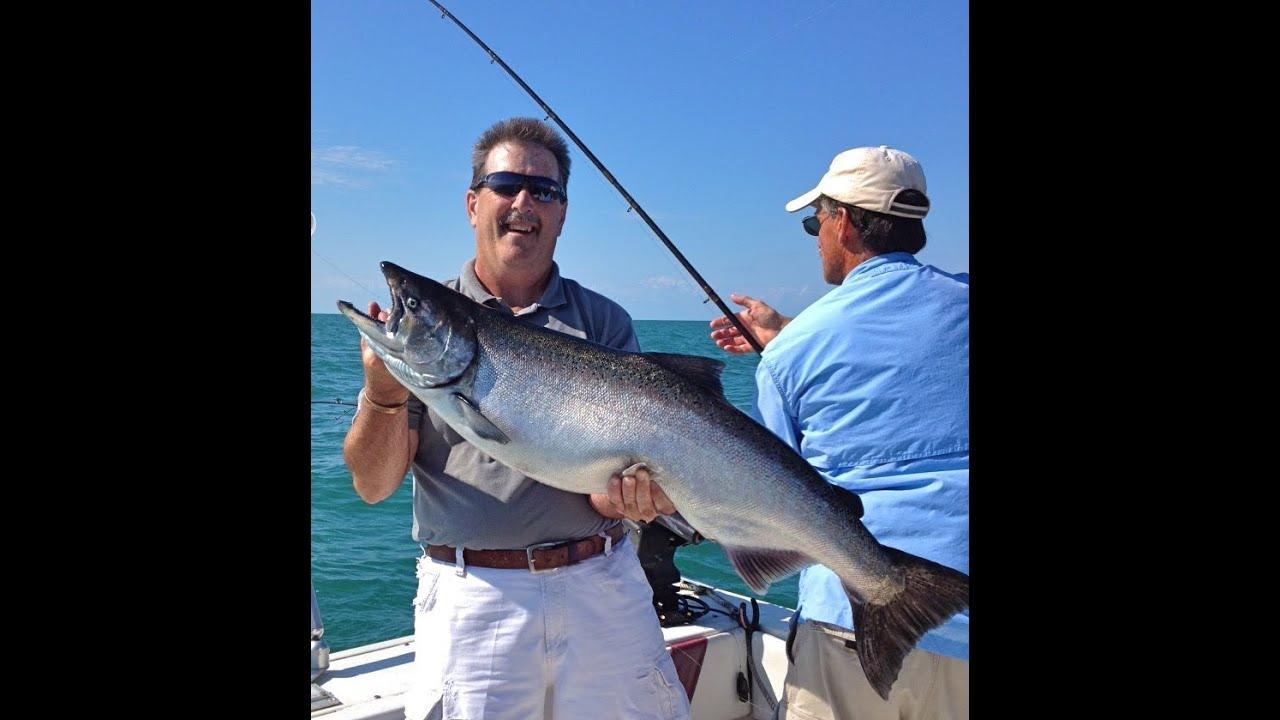 Lake ontario salmon fishing charters with reelsilver for Lake ontario salmon fishing report