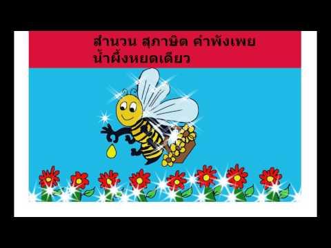 สำนวน สุภาษิต คำพังเพย น้ำผึ้งหยดเดียว