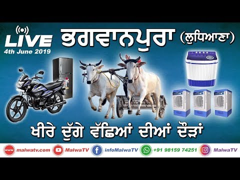 BHAGWANPURA (Ludhiana) OX RACES  [4th-June-2019] 🔴 LIVE STREAMED VIDEO