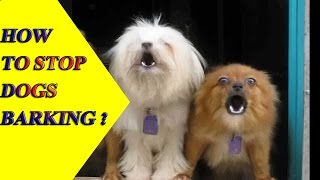 Stop Dog Barking | How To Stop Dog Barking | Stop Your Dog Barking