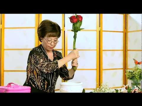 Cam Hoa - Buom Xuan