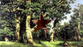 видео Белорусские кухни из массива дуба и других материалов