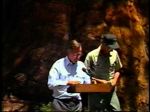 A Presidential Proclamation: President Bush At The Sequoia National Forest  July 14, 1992