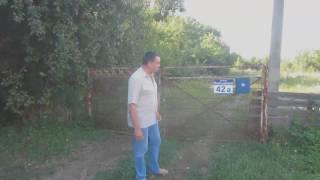 видео Муниц. выборы