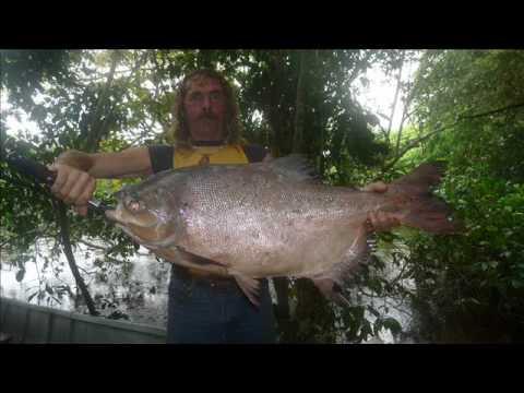 PAYARA FISHING LODGE AMAZONASFISHING VENEZUELA