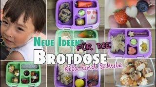 Brotdosen für Kita und Schule | Neue einfache Rezepte und Ideen | mamiblock