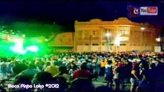 Bloco Pinto Loko #2012 - Conexxao.flv