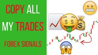📈 How To Get Started With Our VIP Forex Signals 📉 | Forex Signals Provider