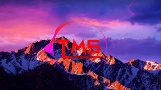Im A Survivor - TMS Remix (Tomb Raider Version)