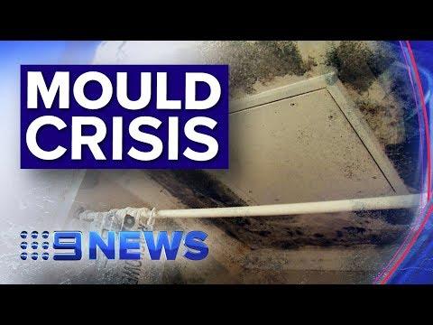 Mould Infestations Are Making Australian Public Housing Residents Sick | Nine News Australia