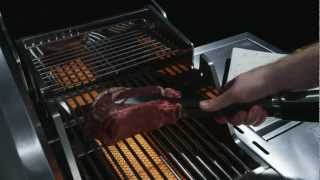 Black & Decker 6500 Stainless Series Gas Grill