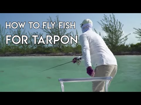 How To Fly Fish For Tarpon