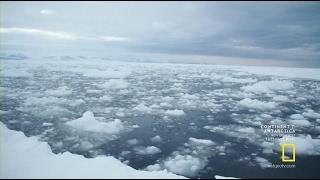 Антарктика. Документальный фильм -4 (Последний шанс)
