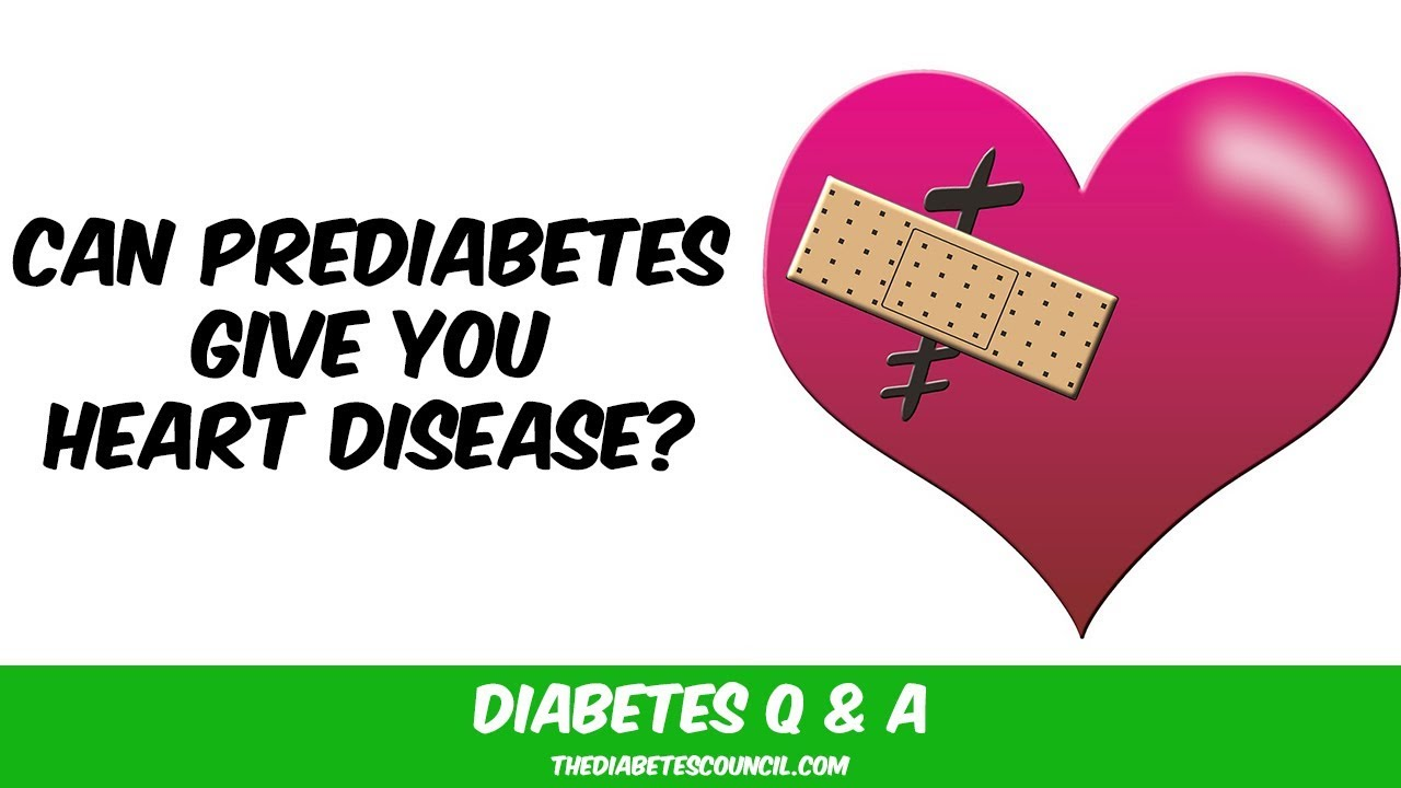 Does Prediabetes Increase My Risk Of Cardiovascular Disease Youtube