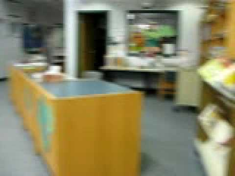 Merton Primary School Virtual Tours: Hallway/Library