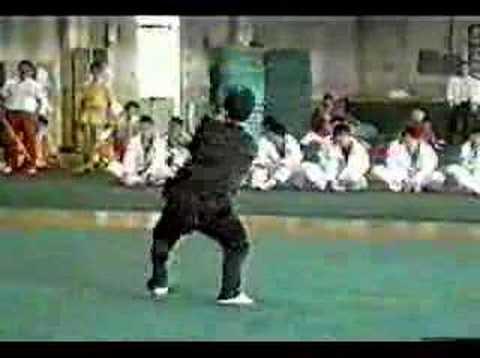 Kung Fu Eagle Style Eagle Claw Kung-Fu - Y...