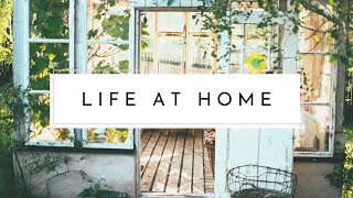Out of the Cities (Part I): My Semi-Country Living Experience