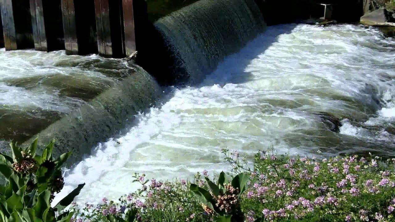 Homestead Dam Betsie River Rustic Resort Benzie