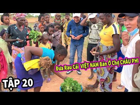 (Tập 20) Nông Nghiệp VIỆT NAM ở Châu Phi   Thu Hoạch Mớ Rau Cải Đem Ra Chợ Châu Phi Bán và...Cái Kết