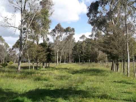 Rancho 47 Hectáreas, Jilotepec, Méx