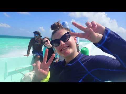BIO 221 Introduction to Marine Biology Belize MVCC 2020