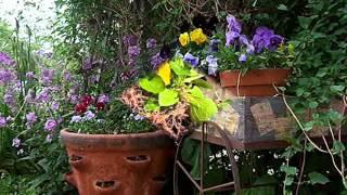 Вазоны своими руками(Уличные вазоны для цветов, которые иногда еще называют мобильными клумбами, – это превосходное декоративн..., 2014-09-08T18:46:26.000Z)
