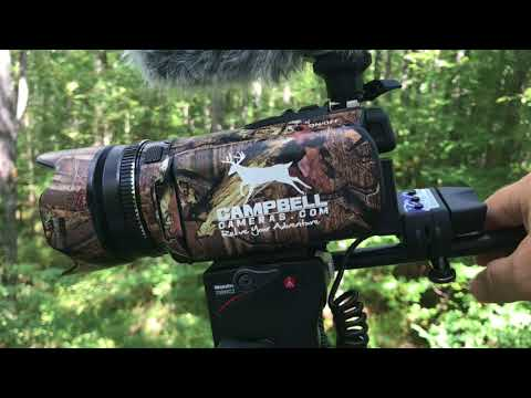 Treestand Hunting Self Filming Set Up
