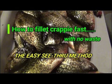"How to fillet crappie fast with no waste.   The easy ""see-through method"""