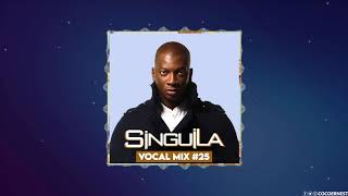 Singuila   Mixtape 2020 #25   Rnb & Afro Pop   Best of by Coco Ernest