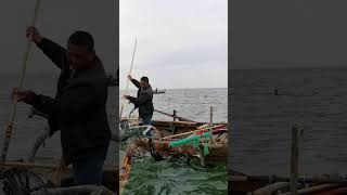 Fish fishing | Catching Fish | Hunting Fish From Hole Using Hook #00267