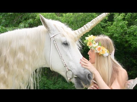 Fairy Sarah and Friends - Fairy Sarah - Luna Rose the magic Unicorn | Learning For Kids