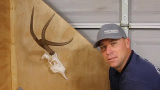 DEER SKULL HALF MOUNT PROJECT