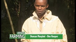 A young Beekeeper's success story - part 2