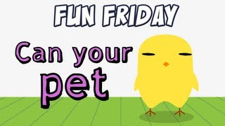 Fun Friday - Can Your Pet - Derpybird