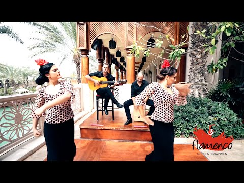 Flamenco Art and Entertainment Promotional Video (Full Version)