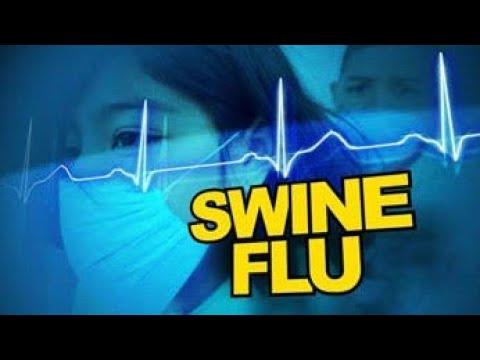 SWINE FLU SYMPTOMS AND PRECAUTIONS |  AWARENESS |  Ahmedabad Municipal Corporation